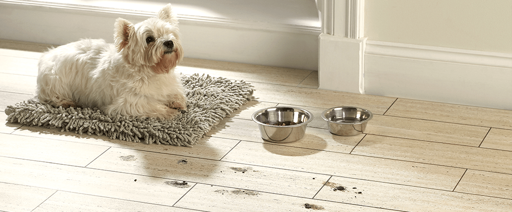 Pet friendly Vinyl flooring